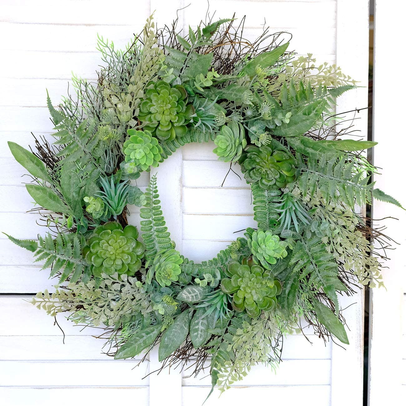 How To Make A Living Succulent Wreath Succulents Network